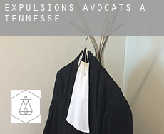 Expulsions avocats à  Tennessee