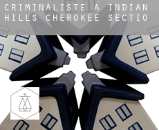 Criminaliste à  Indian Hills Cherokee Section