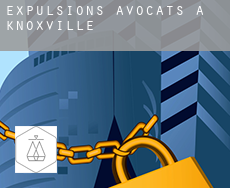 Expulsions avocats à  Knoxville