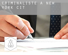 Criminaliste à  New York City