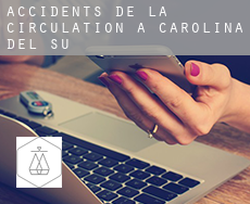 Accidents de la circulation à  Caroline du Sud
