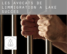 Les avocats de l'immigration à  Lake Success