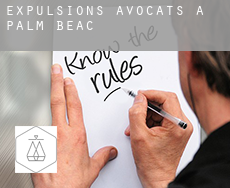 Expulsions avocats à  Palm Beach